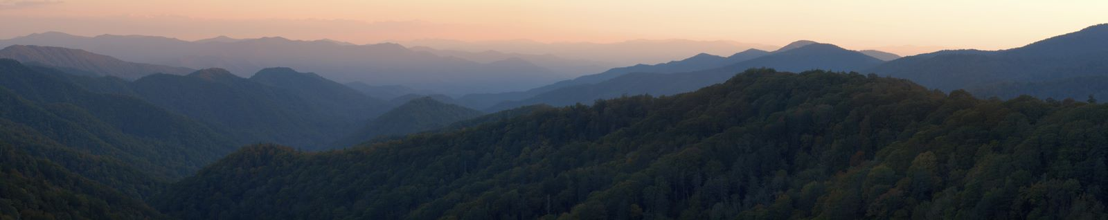 The Appalachian Prosperity Project Presents: Profiles in Partnership