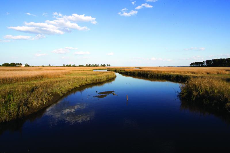 Partnering to Enhance the Chesapeake Bay and its Dependent Businesses